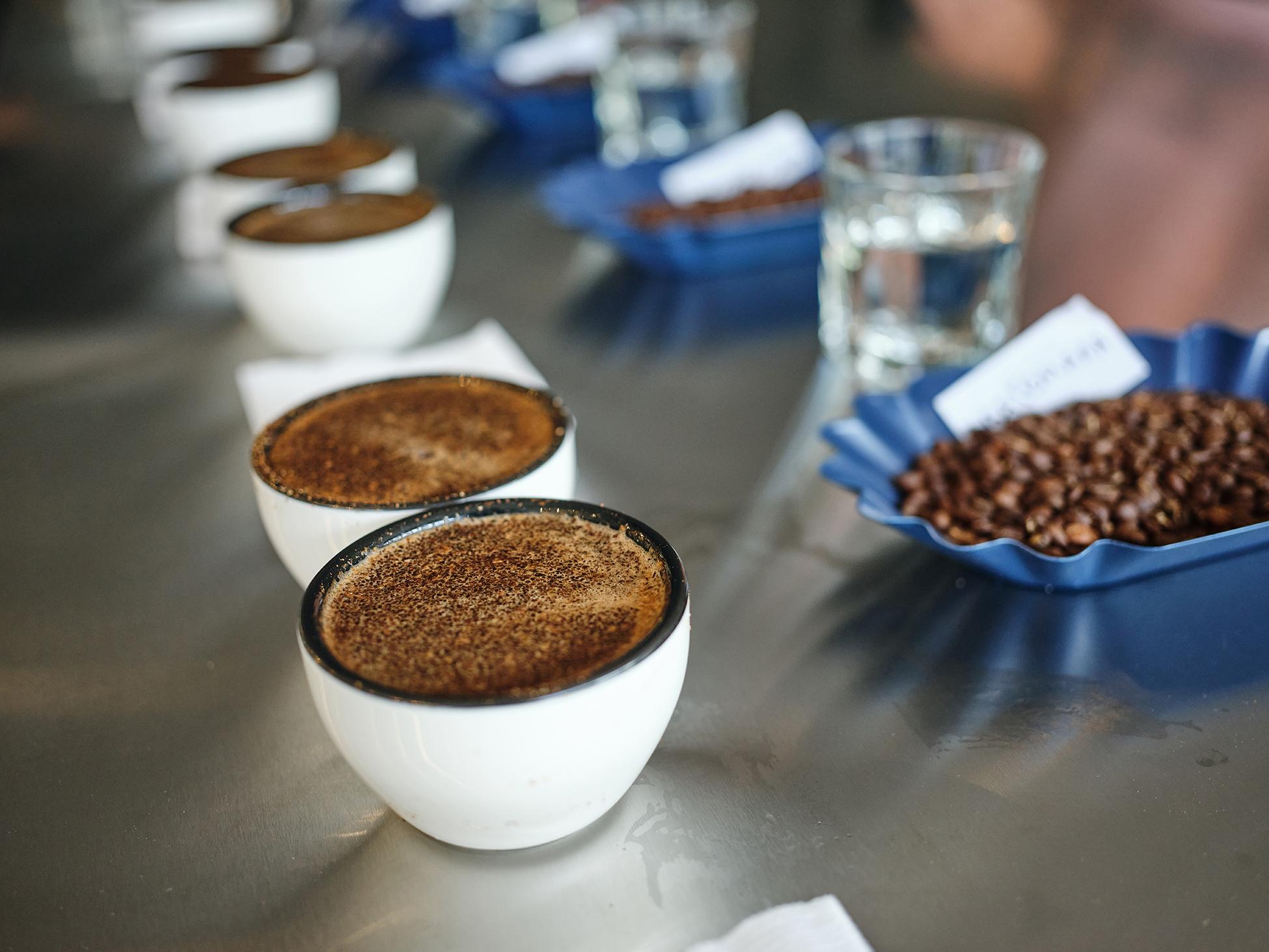 Prozesses der Kaffeeverkostung