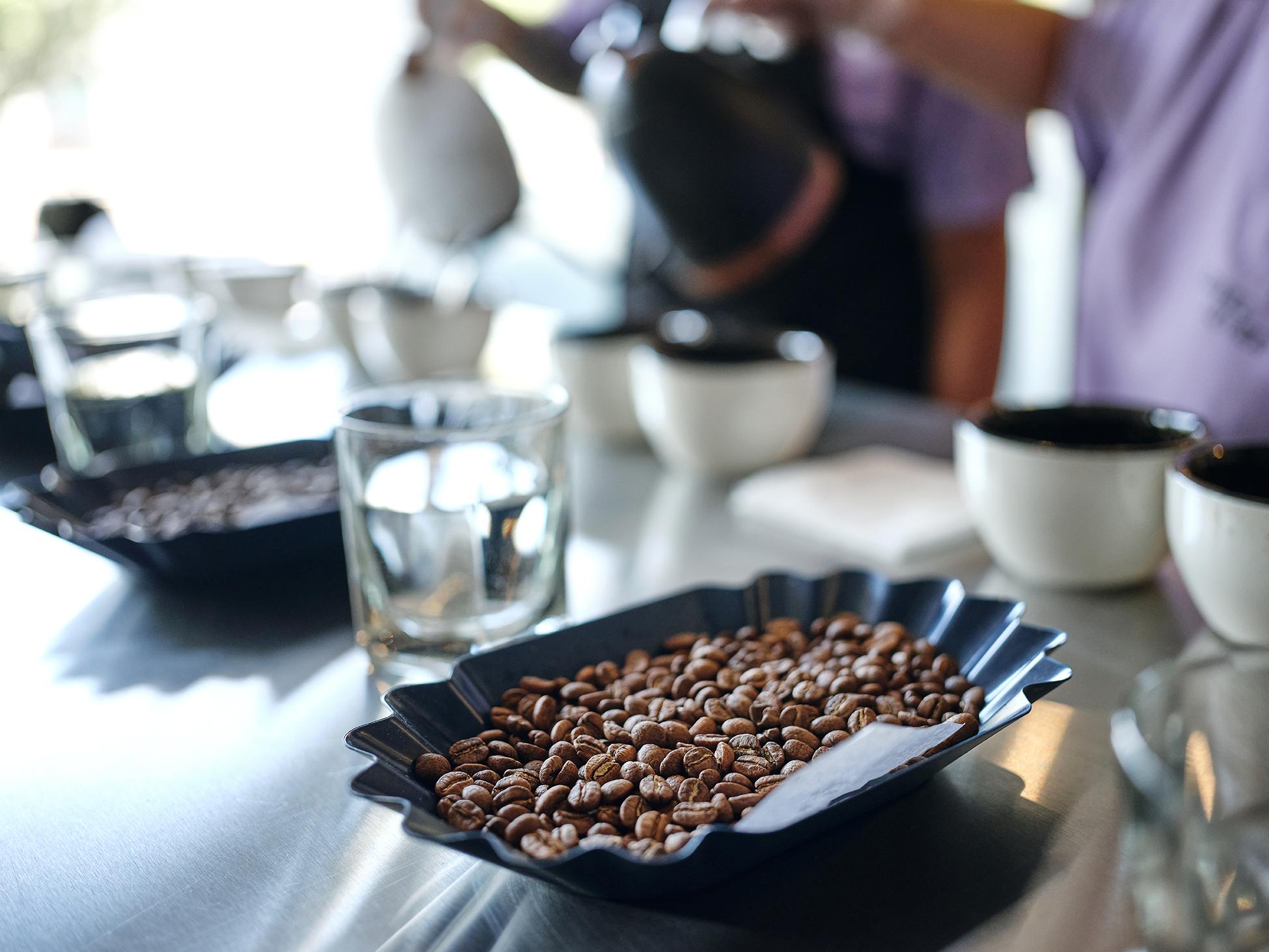 Nahaufnahme des Prozesses des Kaffeeschröpfens