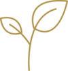 Piktogramm Nachhaltigkeit